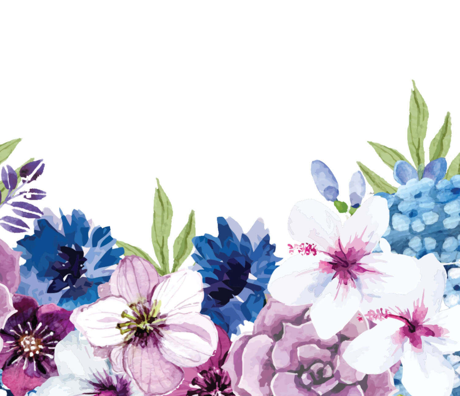 Colorful flowers illustration